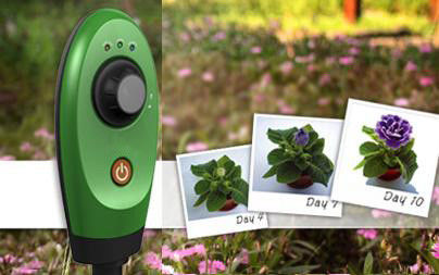 Customized 8GB Memory Wildlife Garden Camera Field of View 49.5º
